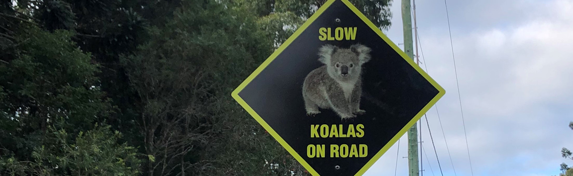 Koala wilflife road sign.png