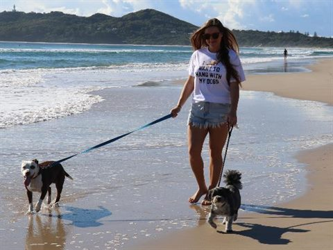 Woman walks two dogs on the beach